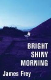 bright-shiny-morning1.jpg